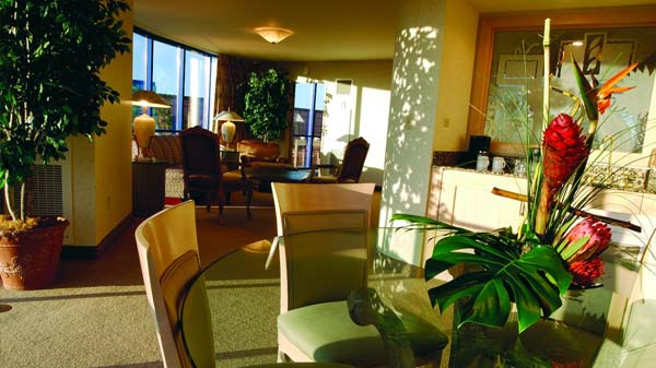 Rio Suites Hotel Las Vegas Hotels Las Vegas Direct